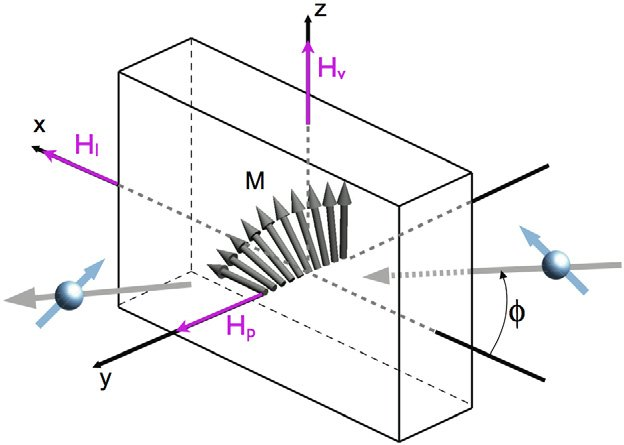 Probing magnetic domain wall profiles by neutron spin precession