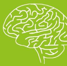 Semaine du cerveau : conférences d'intérêt général à Neurospin