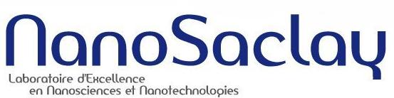 Journée Annuelle du LabEx NanoSaclay - 11 Juin 2014