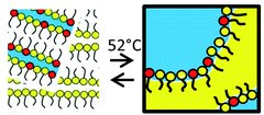 Quenched microemulsions: a new route to proton conductors