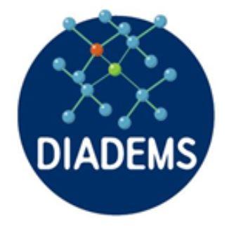 Ecole DIADEMS financée par le LabEx PALM