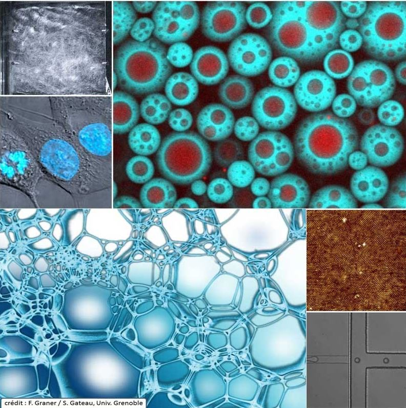 Annonce : Journée scientifique