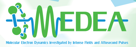 MEDEA ITN european project :  - Final meeting LUND - 24th&25th September 2018