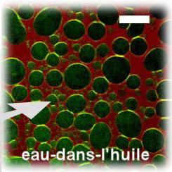 Microscopie confocale au NIMBE/LIONS
