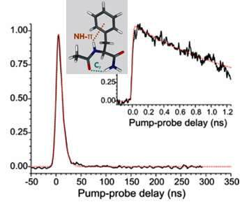 Pump-probe signal obtained after pumping the origin of NAPA B with nanosecond la