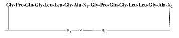 Brevet: Peptides cycliques fluorescents, procèdes de préparation de ceux-ci et utilisation de ces peptides pour mesurer l'activité enzymatique d'une enzyme protéase