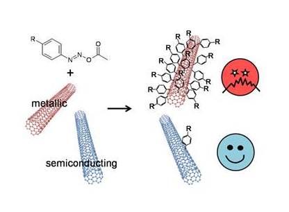 thesis functionalization carbon nanotubes