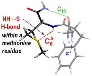 Liaison NH<sub>amide</sub>---S<sub>méthionine</sub> mise en évidence dans un d