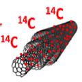 La biodistribution des nanotubes de carbone dans l'organisme