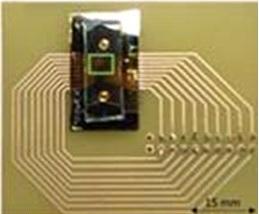 Biopuce à base de capteurs GMR pour le diagnostic biologique précoce à haute sensibilité