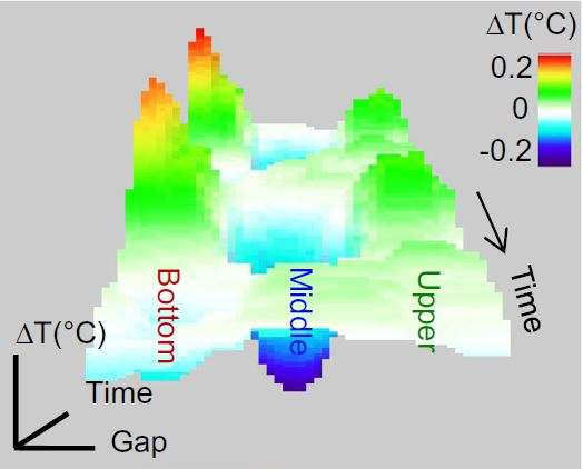 Strain‑induced violation of temperature uniformity in mesoscale liquids