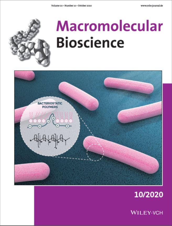 Nouvelles surfaces antibactériennes efficaces et modulables par greffage robuste de polyionènes