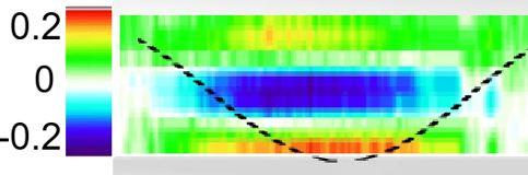 Observation expérimentale d'un effet thermoélastique dans un liquide