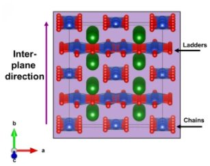 Loop currents in two-leg ladder cuprates