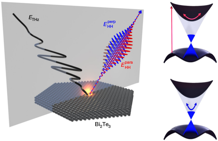 Ultrafast dynamics of topological surface states under strong-field control