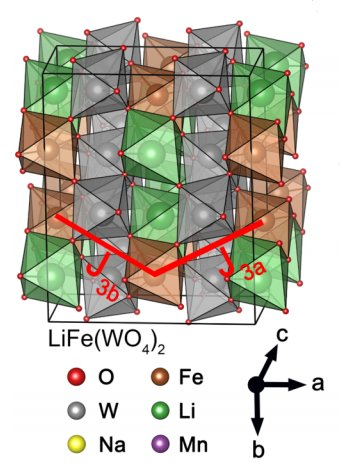 Single-crystal investigations on the multiferroic material LiFe(WO4)2