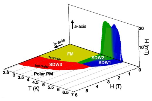 Field-Induced Modulated State in the Ferromagnet PrPtAl