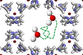 Heterogeneous Microscopic Dynamics of Intruded Water in a Superhydrophobic Nanoconfinement: Neutron Scattering and Molecular Modeling