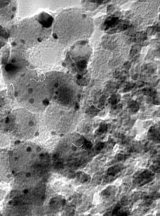 Nanoparticules de Pt (2-3 nm) sur TiO2 (15 nm).