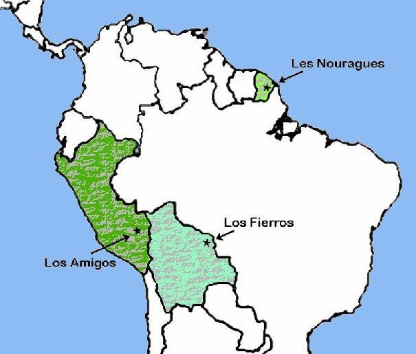 Les feuilles tombent aussi en Amazonie !