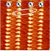 Chain-length dependence of the 2D self-assembly of alkylated-triphenylenes on gold