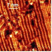 Chemical control of self-assembled monolayers of organosylil, organogermyl and organostannyl derivatives on gold