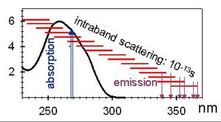 Représentation schématique des processus d'absorption et de fluorescence pou