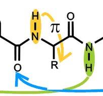 Repliement de chaînes peptides en détente supersonique