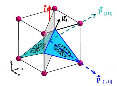 Coexistence of ferroelectricity and magnetism in the multiferroic compound BiFeO3