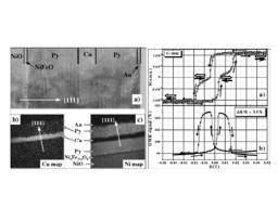 Exchange coupled single-crystalline metal/oxide ferro/antiferromagnetic interfaces