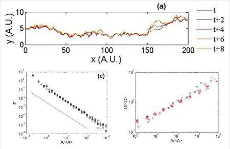 Universal behavior of the dynamics of slow crack growth