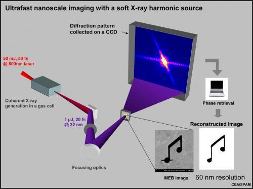 Imagerie nanométrique monocoup avec une source harmonique de rayons X mous