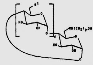 Brevet : Dérivés de cyclodextrine, utilisable pour solubiliser des composés chimiques hydrophobes tels que des médicaments et leurs procédés de préparation
