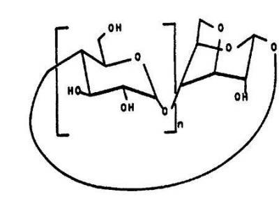 Brevet : Utilisation de mono-3,6-anhydrocyclodextrines pour solubiliser un composé hydrophobe et pour contrôler la pureté d'un énantiomère, et procédé de préparation de ces cyclodextrines