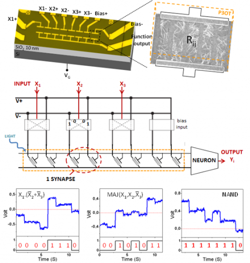 Memory nano-devices and circuits