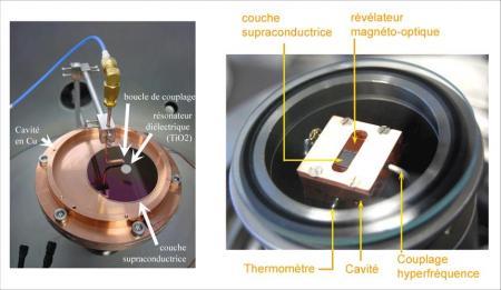 Etude du comportement microonde des supraconducteurs à haute température critique