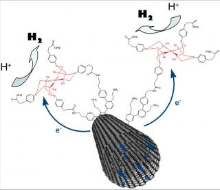 Nanoscience and bio-inspired chemistry: a new step towards the production of hydrogen without platinum