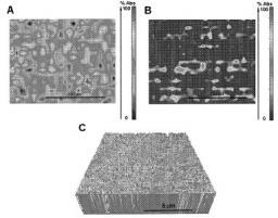 Brevet : Biopuces pour la détection de l'activité enzymatique d'une enzyme protéase