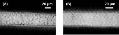 Brevet : Capteurs chimiques a base de nanotubes de carbone, procédé de préparation et utilisations
