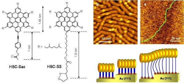 2.1  Auto-assemblages supramoléculaires sur des surfaces