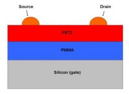 Control of roughness at interfaces and the impact on charge mobility in all-polymer field-effect transistors.