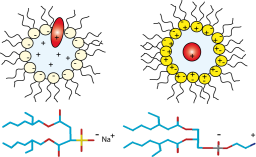 NMR : Novel zwitterionic reverse micelles for encapsulation of proteins in low-viscosity media