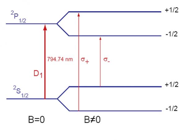 Hyperpolarized species for NMR/MRI : Laser-polarized xenon