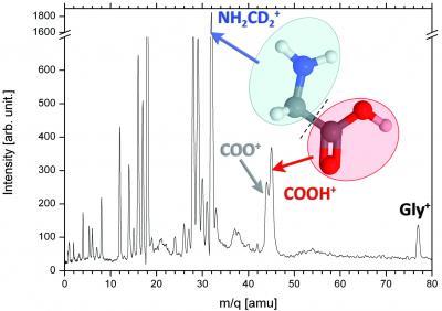 Effet de l'environnement sur la fragmentation par irradiation d'ions lourds de molécules d'intérêt biologique