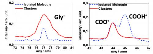 Effet de l\'environnement sur la fragmentation par irradiation d\'ions lourds de molécules d\'intérêt biologique