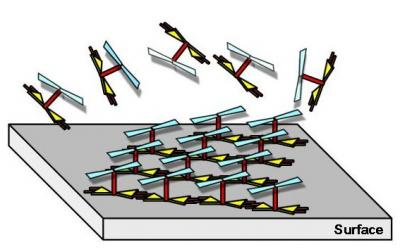 Une architecture moléculaire 3d pour la réalisation de surfaces actives