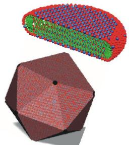 Molecular assembly and nanostructured materials
