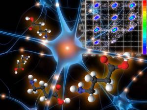 Dynamique de fragmentation de l''acide γ-aminobutyrique (GABA) induite par des ions lents