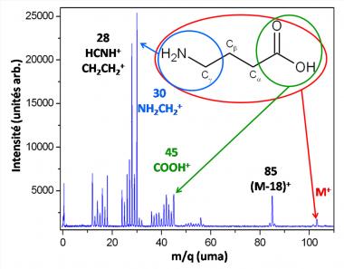 Dynamique de fragmentation de l'\'acide γ-aminobutyrique (GABA) induite par des ions lents