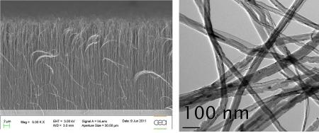 Vertically aligned carbon nanotubes carpets over large surfaces